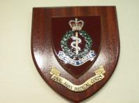 RAMC wall shield