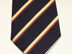 3rd Carabiniers (Prince of Wales' Dragoon Guards) Silk striped t - Click Image to Close